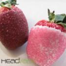 Strawberry Yum Yum eJuice