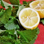 Lemon Balm eJuice